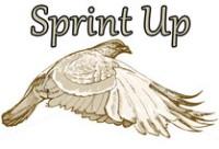 Спортни гълъби Маратон